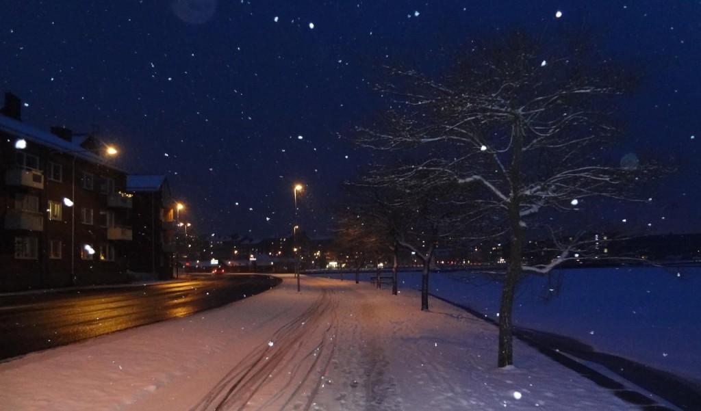 Fin vintervy från Borgmästarekajen