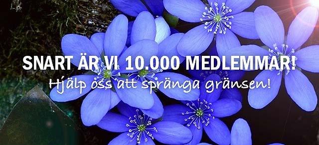 Sverigedemokraterna växer så det knakar
