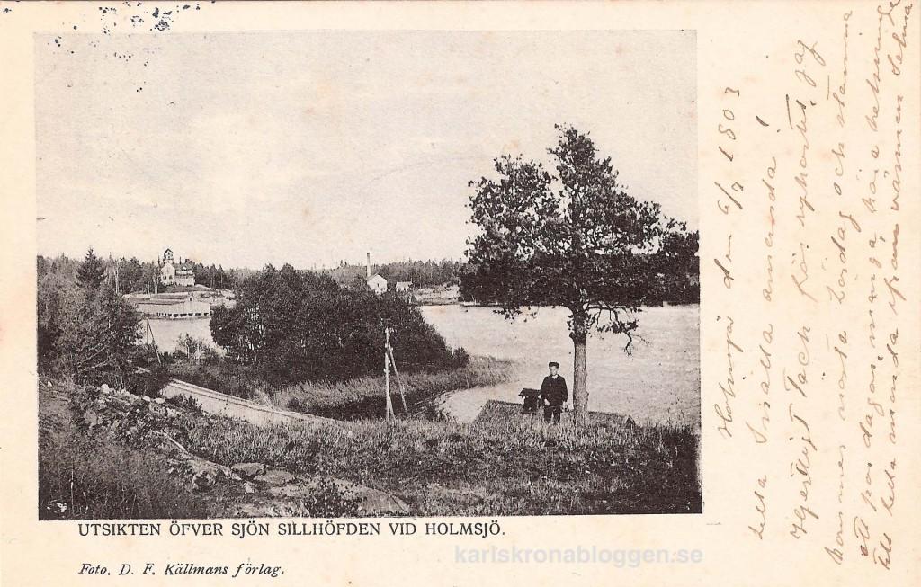 Utsikten över sjön Sillhöfden vid Holmsjö