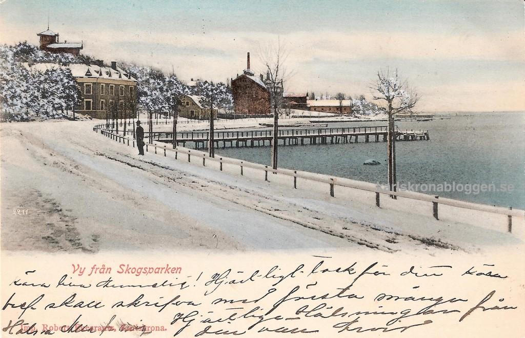 Vinter för 100 år sedan