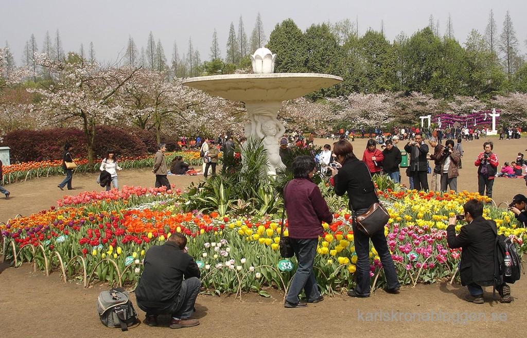 Prince Bay Park i Hangzhou i Kina