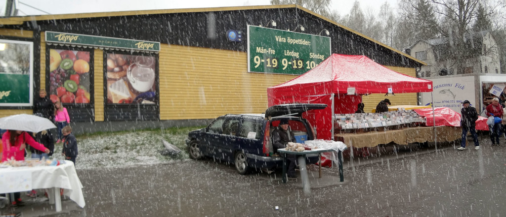 Holmsjö Marknad i hagel