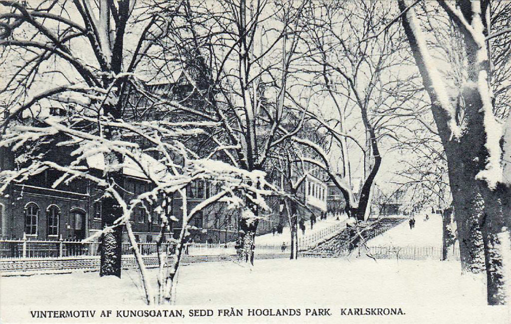 Hoglands park i vinterskrud