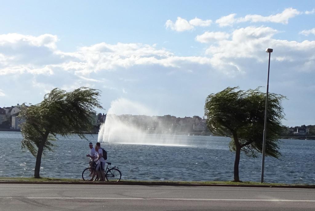 Friska vindar på Borgmästarefjärden