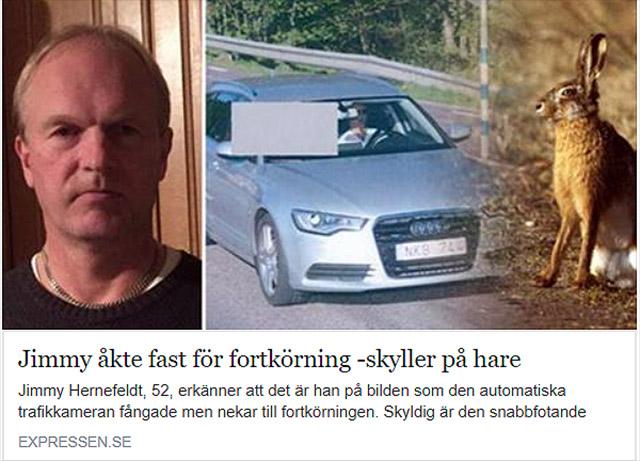 Varning för snabb hare i Jämjö