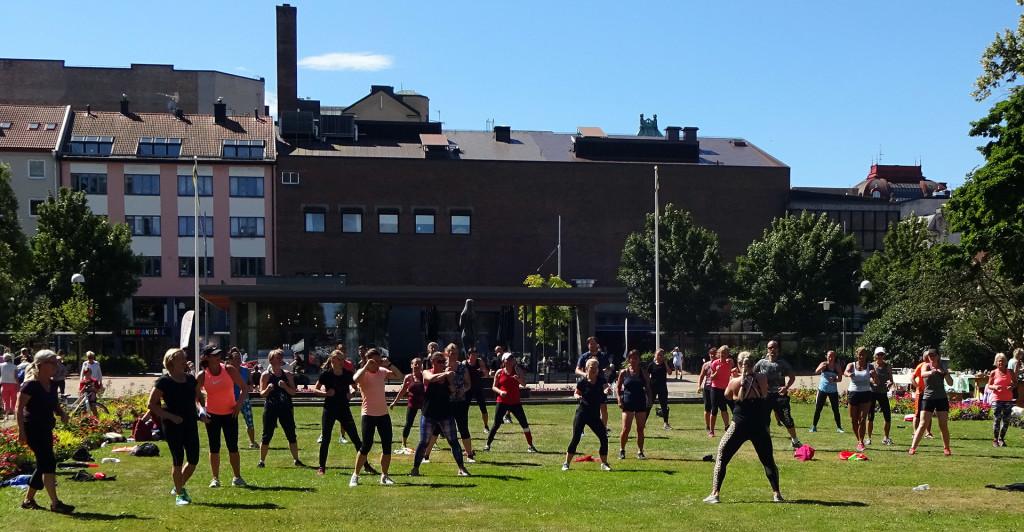 Gratis träning i Hoglands park