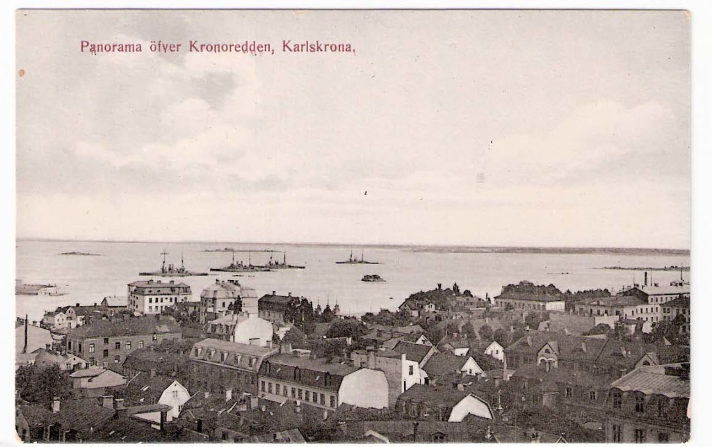 Panorama över kronoredden